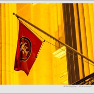 SF 49ers flag at City Hall