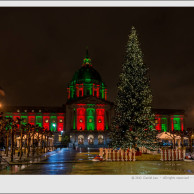 San Francisco City Hall in Festive Colors and Christmas Tree