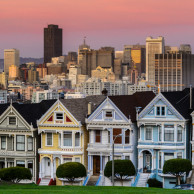 painted_ladies_DL_20120222_DSC3262