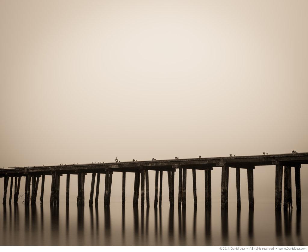 Pier Pilings #1