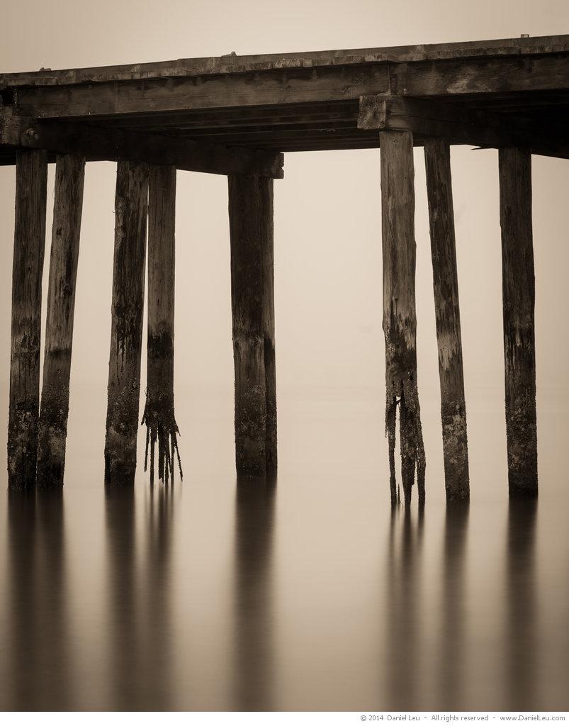 Pier Pilings #2