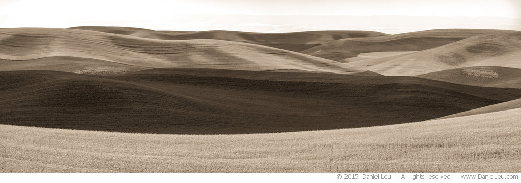 Rolling Hills, Palouse