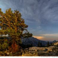 Stary Sky in Yosemite