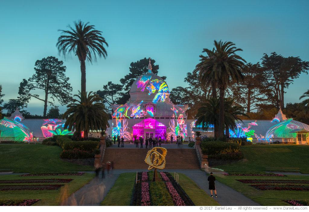 San Francisco Conservatory of Flowers Illumination #2