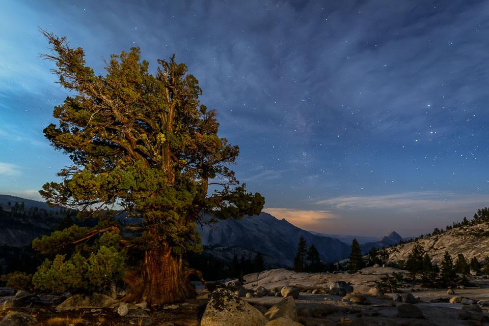 Starry Sky in Yosemite