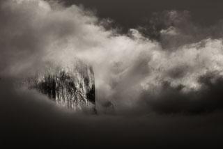 DL_20141122_DSC1454-Yosemite_v1.jpg