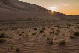 Mongolia_DL_20120710_DSC5897.jpg