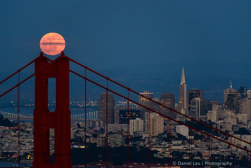 Resting Full Moon