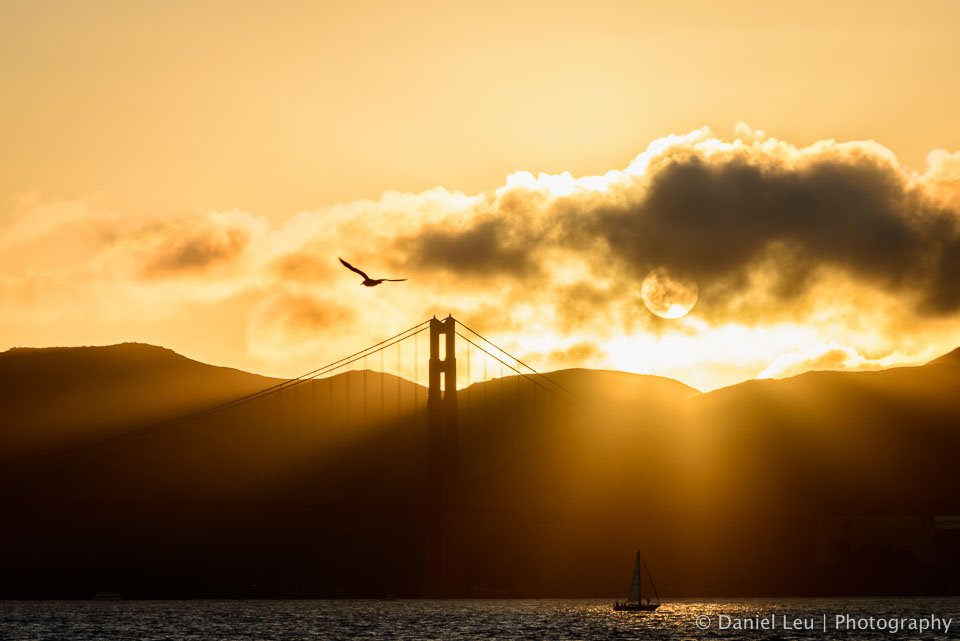 Golden Golden Gate Bridge at Sunset