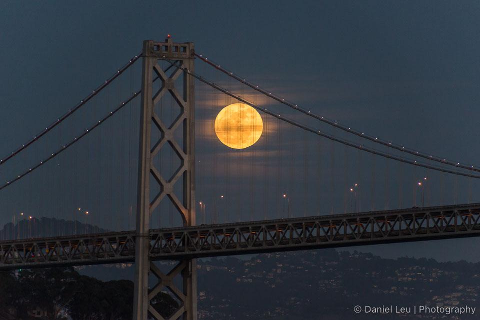 San_Francisco_DL_20130126_DSC5882.jpg