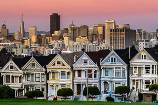 painted_ladies_DL_20120222_DSC3262-ME_v1.jpg